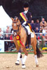 Classic Dancer I von FS Champion de Luxe x Pr Golden Dancer |